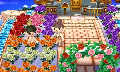 花畑にたたずむおさかな村長