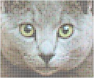 ネコのAA