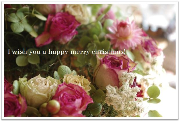 rosechristmas.jpg