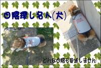 Awaji_20100430_2