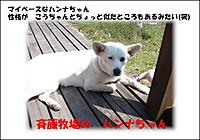 20120408_3