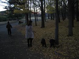 2011.12 ノワール・松枝・花 072