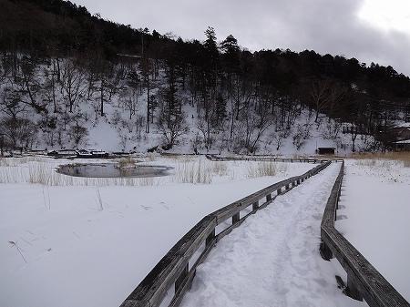 2014.2.12.karenuma 002