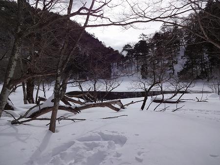 2014.2.12.karenuma 011