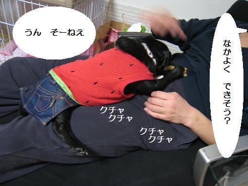 IMG_2089-ひ②