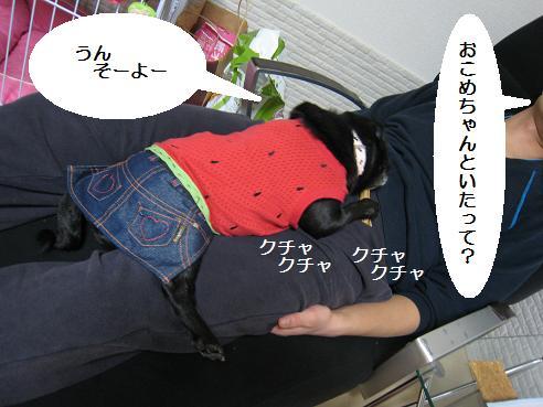 IMG_2090-ひ①
