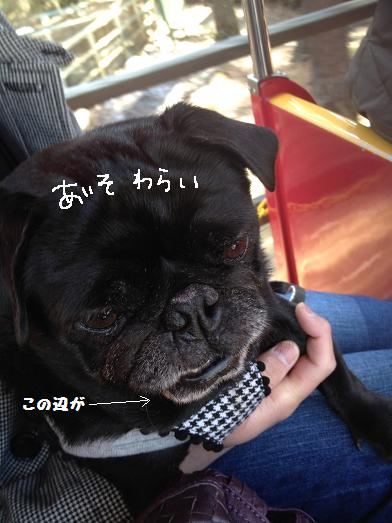 044-愛想笑い