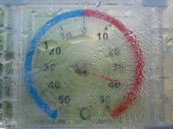 温度計40度