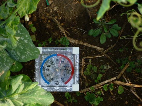 きぬ温度計
