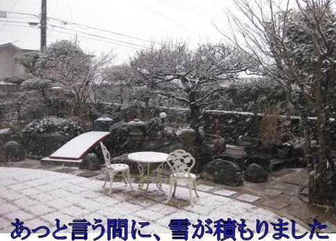 あっという間に、雪が