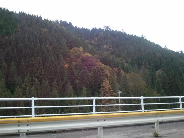 2011-10-15 14.39.24