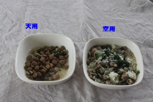 2ワンのご飯