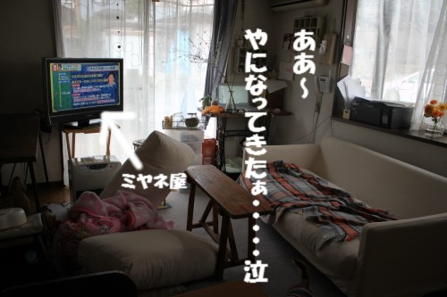 IMG_4956.jpg