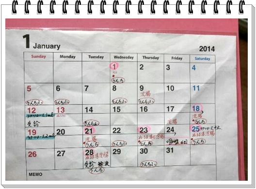 ウンチカレンダー