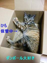 1_20120310_2.jpg