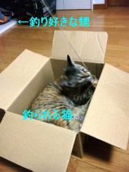 2_20120310_2.jpg