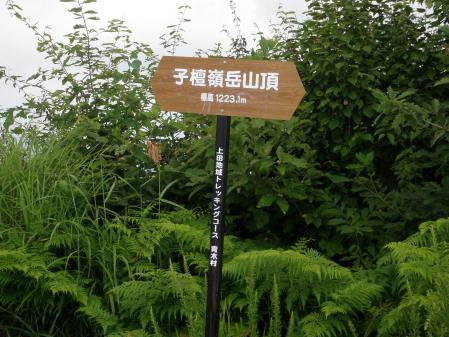 120811子檀嶺山 (6)s