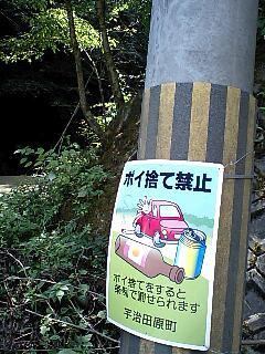 4_20111206164648.jpg