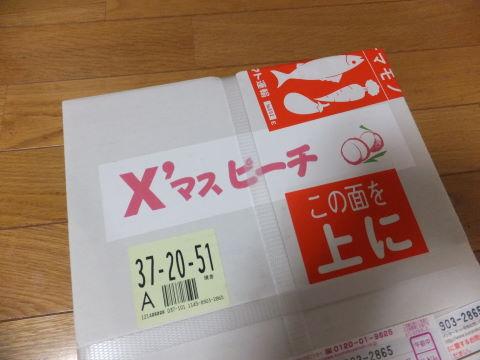 DSCF7176.jpg