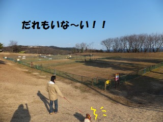 DSCF73820002.jpg
