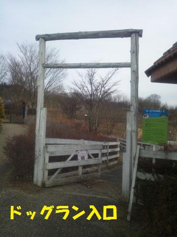 DSC_1080DSC_1080.jpg