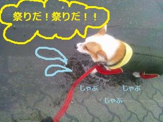 DSC_1112.jpg