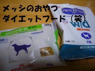 P10605090001.jpg