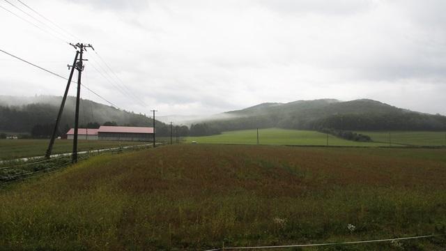 生野駅ホームからの眺め
