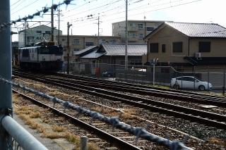EF64 電気機関車