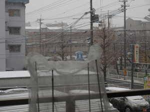 yuki2014.jpg