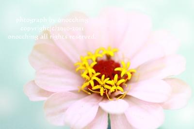 2011_1026_160736-IMG_3910.jpg