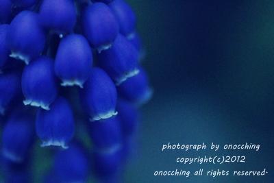 2012_0411_173954-IMG_4882.jpg