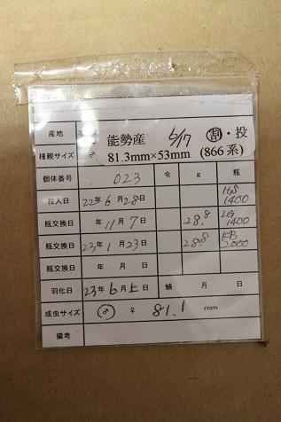 飼育管理票81.1mm