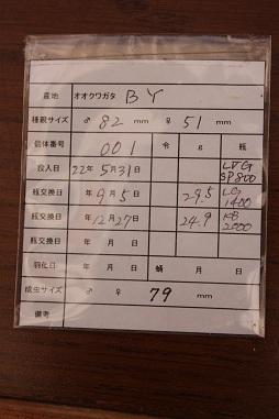 能勢YG美コン管理票