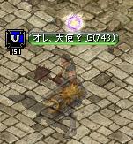 1,24紋章