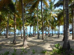 dominican+republic+095_convert_20120415085310[1]