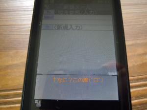20110911.jpg