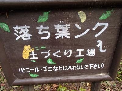 伊達じゃない!! (6)