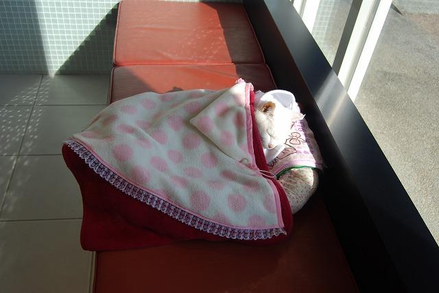 病院でひなたぼっこ