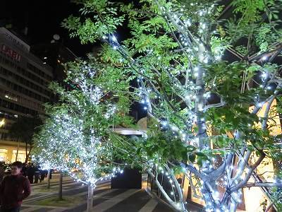 名駅のクリスマスイルミネーション