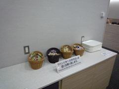 2011-10-27 香港1日目(パナ) 014