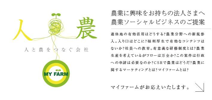myfarm02.jpg