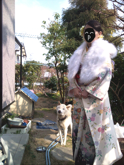 Photo3260-2_20120110130542.jpg