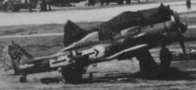 fw190d.jpg
