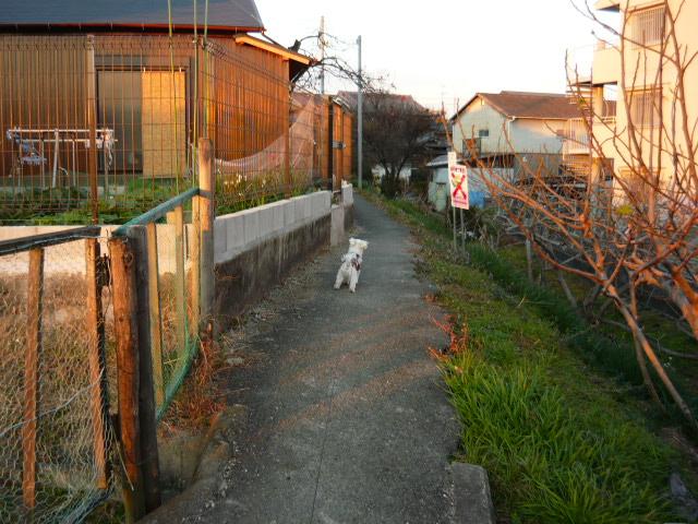 P1430570.jpg