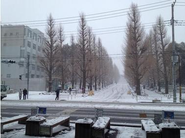 20140209日吉駅下から慶應義塾大学を臨む