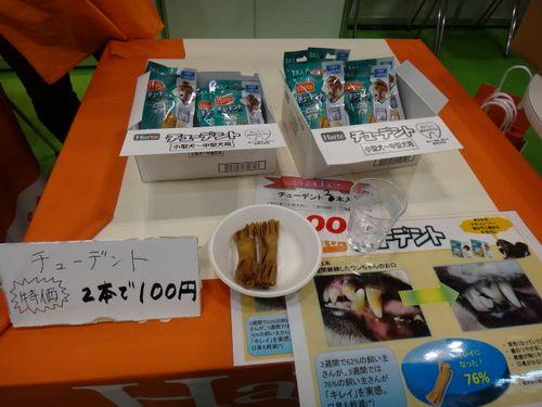 DSC001171.jpg