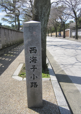 ワンコ観光大使 小田原漁港に行く♪~