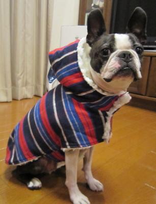クリスマスに間に合った、暖かコート!!