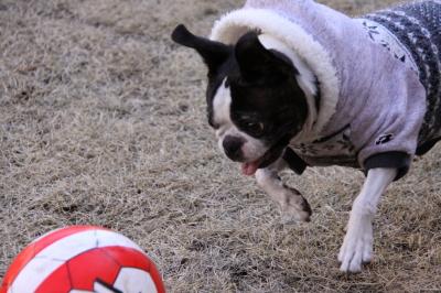 ボールがあれば、一人だって大満足!!